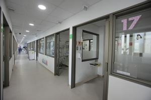 Neonatología INDISA